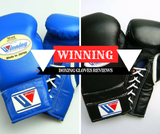 Winning Boxing Gloves Reviews: Perfect for the Beginner – Best